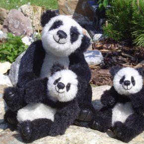 Pandabären