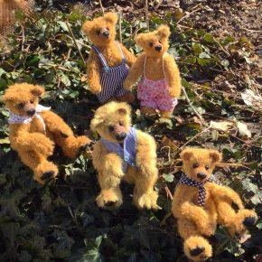 Kleine Bärengruppe